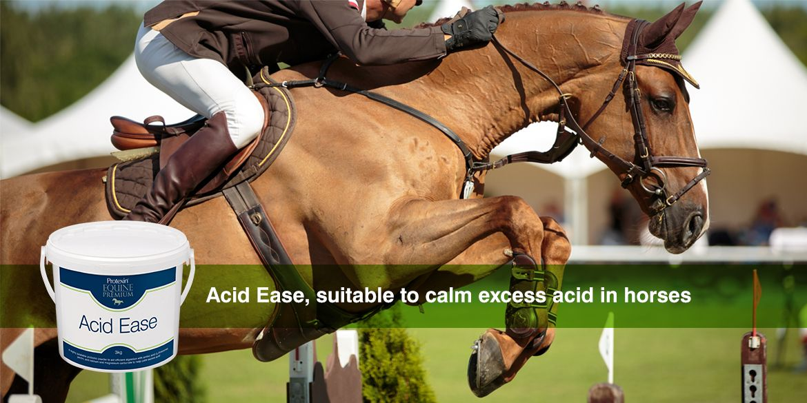 Discover Acid Ease